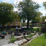 Garten DSC04323